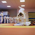 Trénink juda - Akademie Šampion